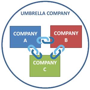 intra company links